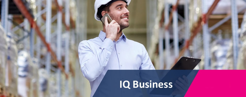 IQ BUSINESS