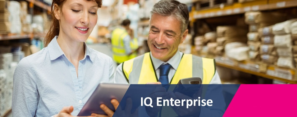 IQ ENTERPRISE